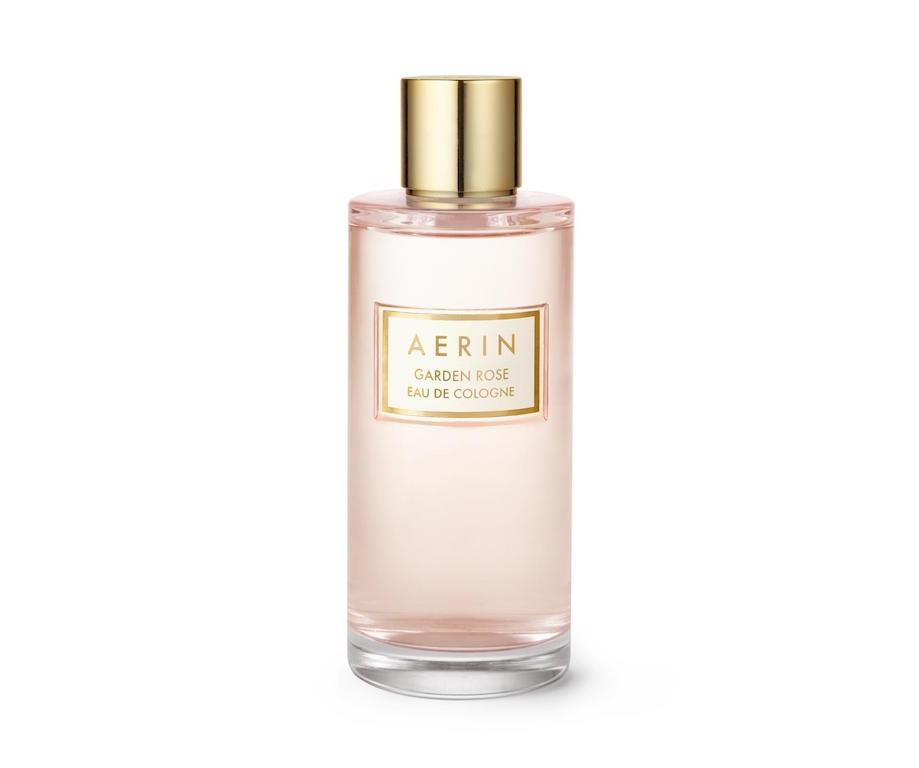 aerin garden rose_1